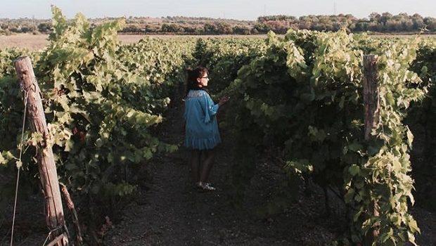 Le_sorelle_del_vino_vigne_raffaellacatania_sicilia