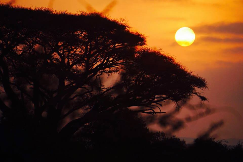 safari_kenya_travel_blogger_alba_amboseli