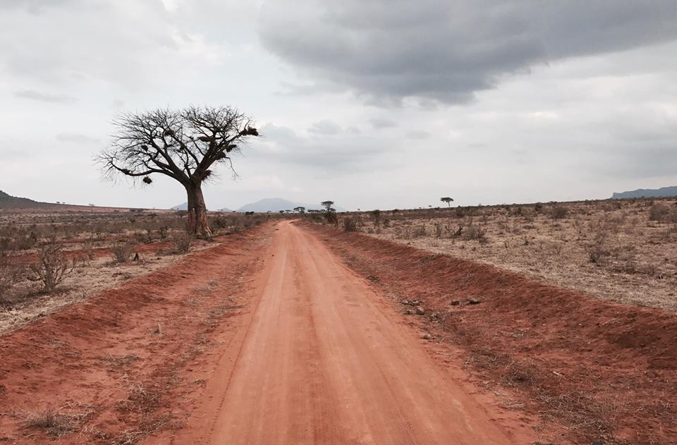 safari_kenya_travel_blogger_terra_rossa_tsavo_est