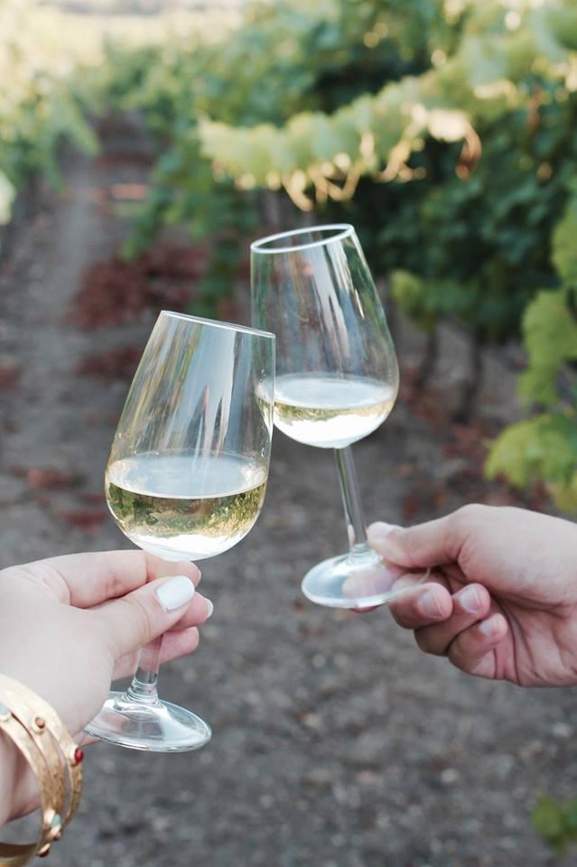 Le_sorelle_del_vino_winetour_grillo_sicilia