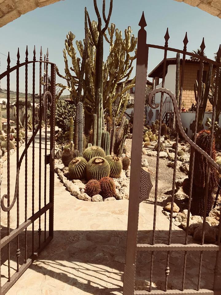 garden_cactus_favara_ingresso_giardino