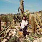 garden_cactus_favara_relais_b&b
