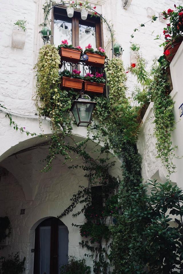 valle_ditria_cisternino_angoli_fiori_vicoli