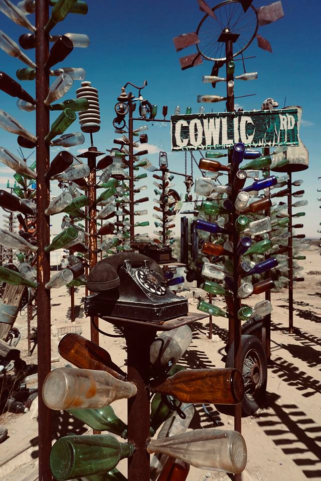 USA_ON_THE_ROAD_Elmer's Bottle Tree Ranch_california_deserto
